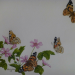 Ladybirds and Butterflies