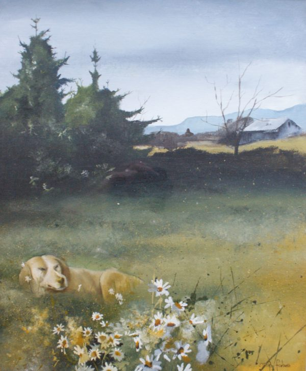 Mike Forbes - Dog in a meadow
