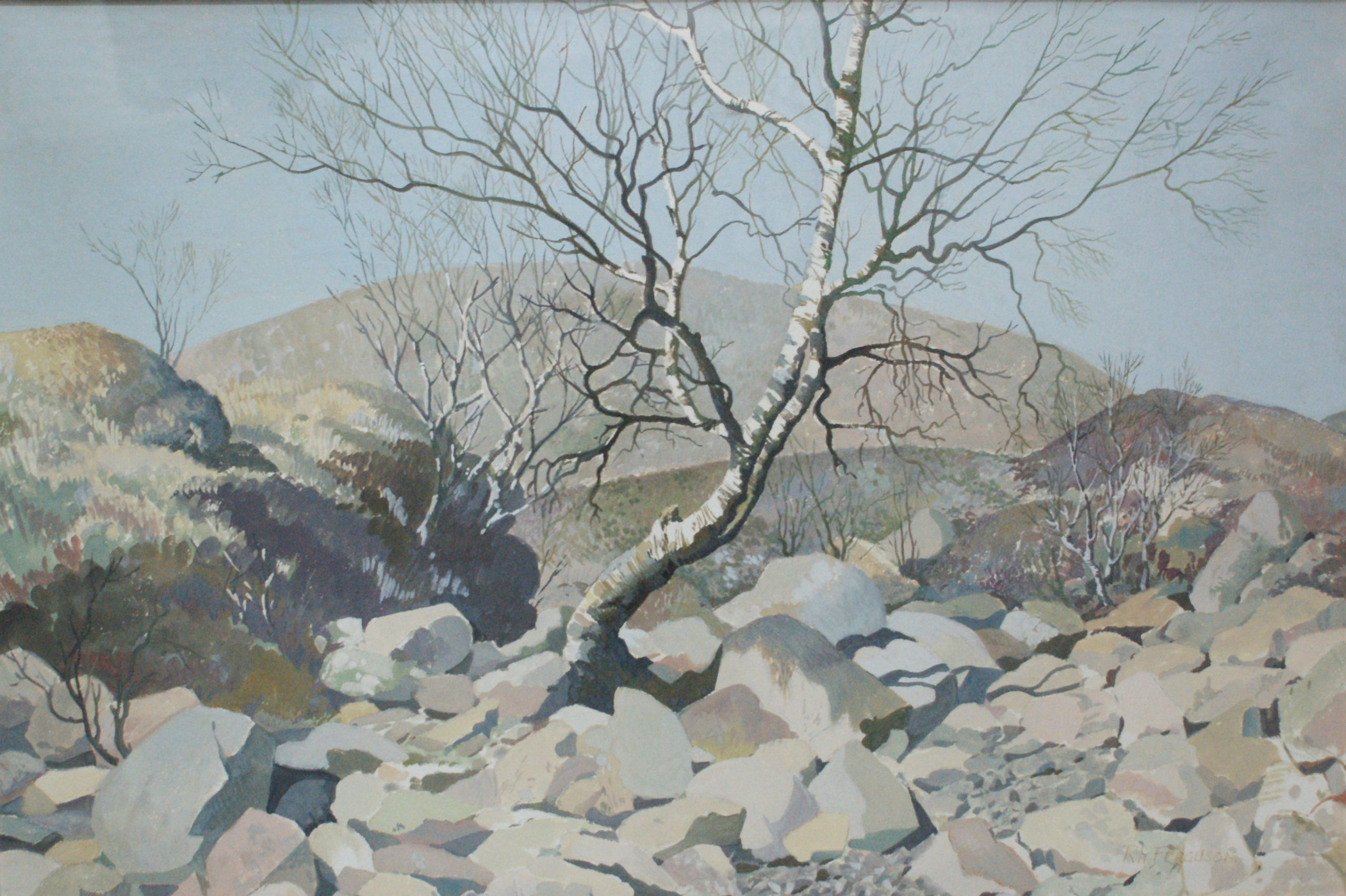 Roy Young Ferguson - Birch Tree