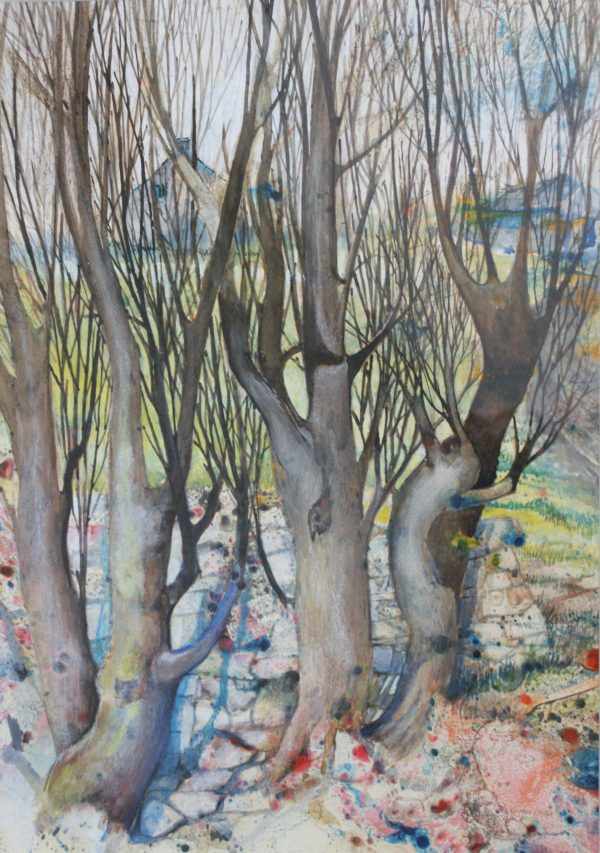 Rayner Holder - Woodland