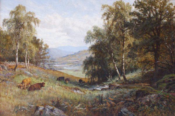 Glendinning - highland cattle