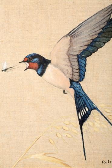 ralston Gudgeon Swallow
