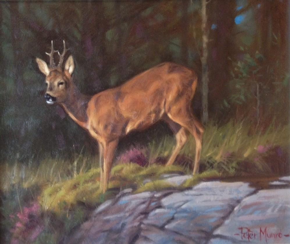 Peter Munro Buck