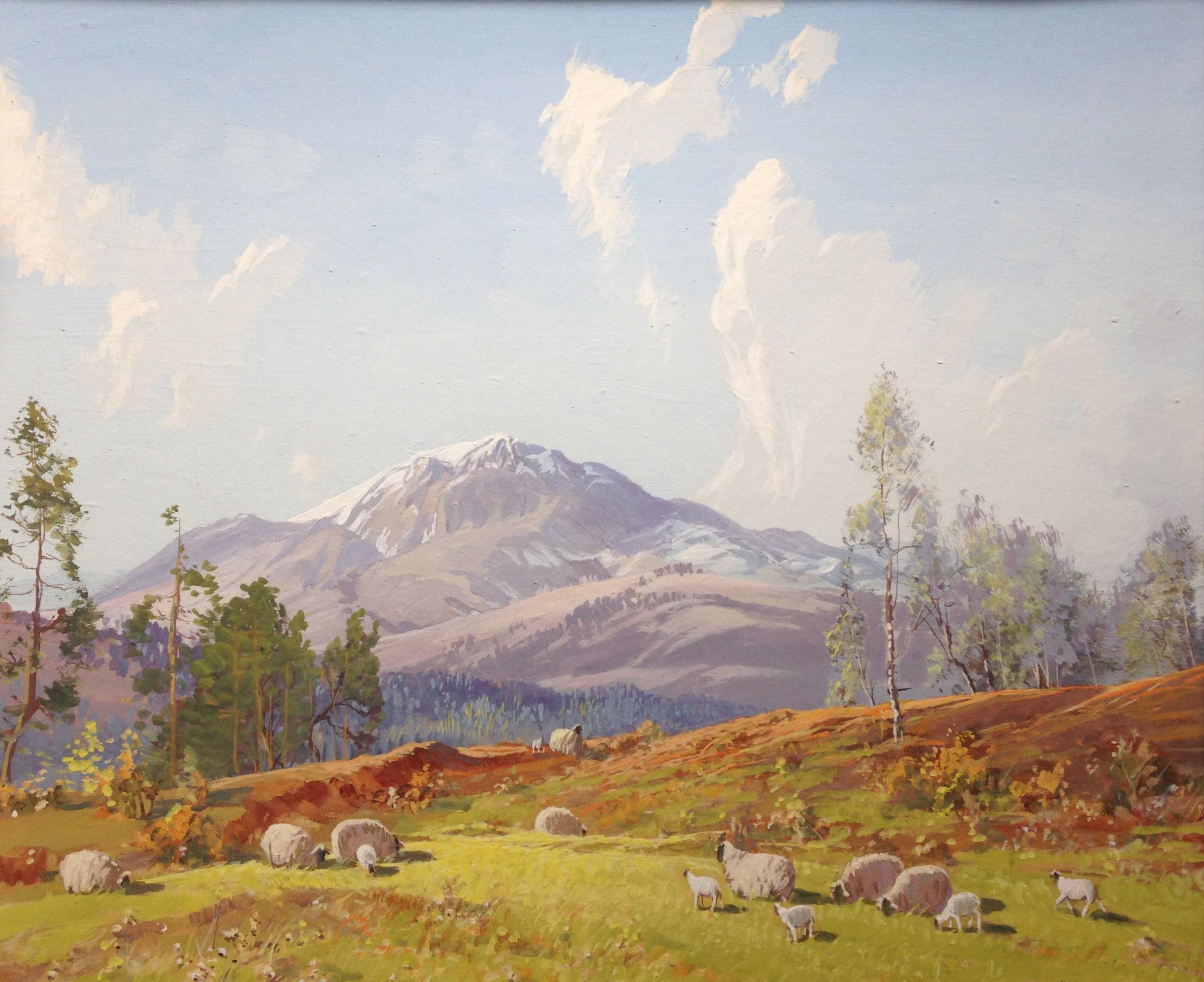 Springtime in Scotland Tom Campbell