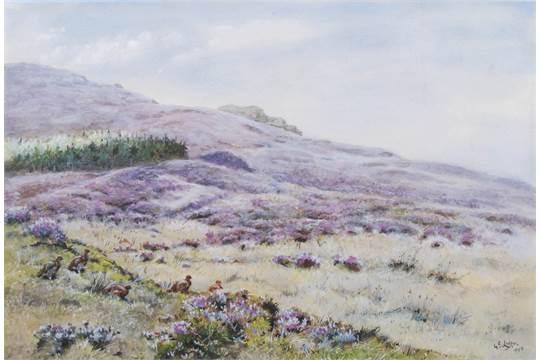 grouse-Edward Lodge on-moor-lodge