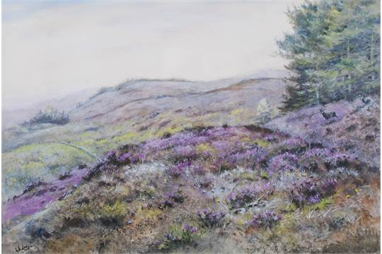 george edward lodge-deer-in-heather