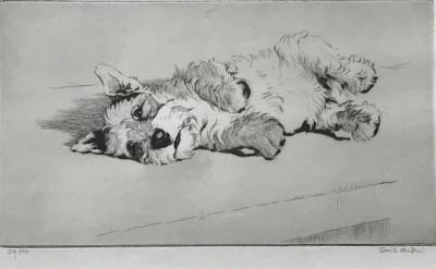 Cecil Aldin west highland terrier