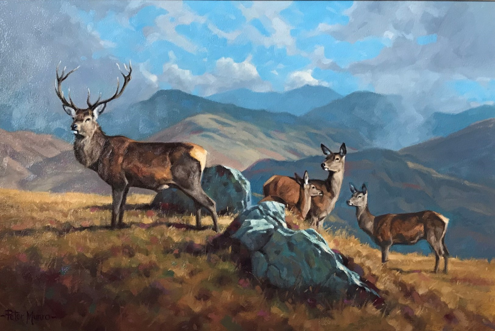 Stag and Hinds in Highland Landscape - Peter Munro