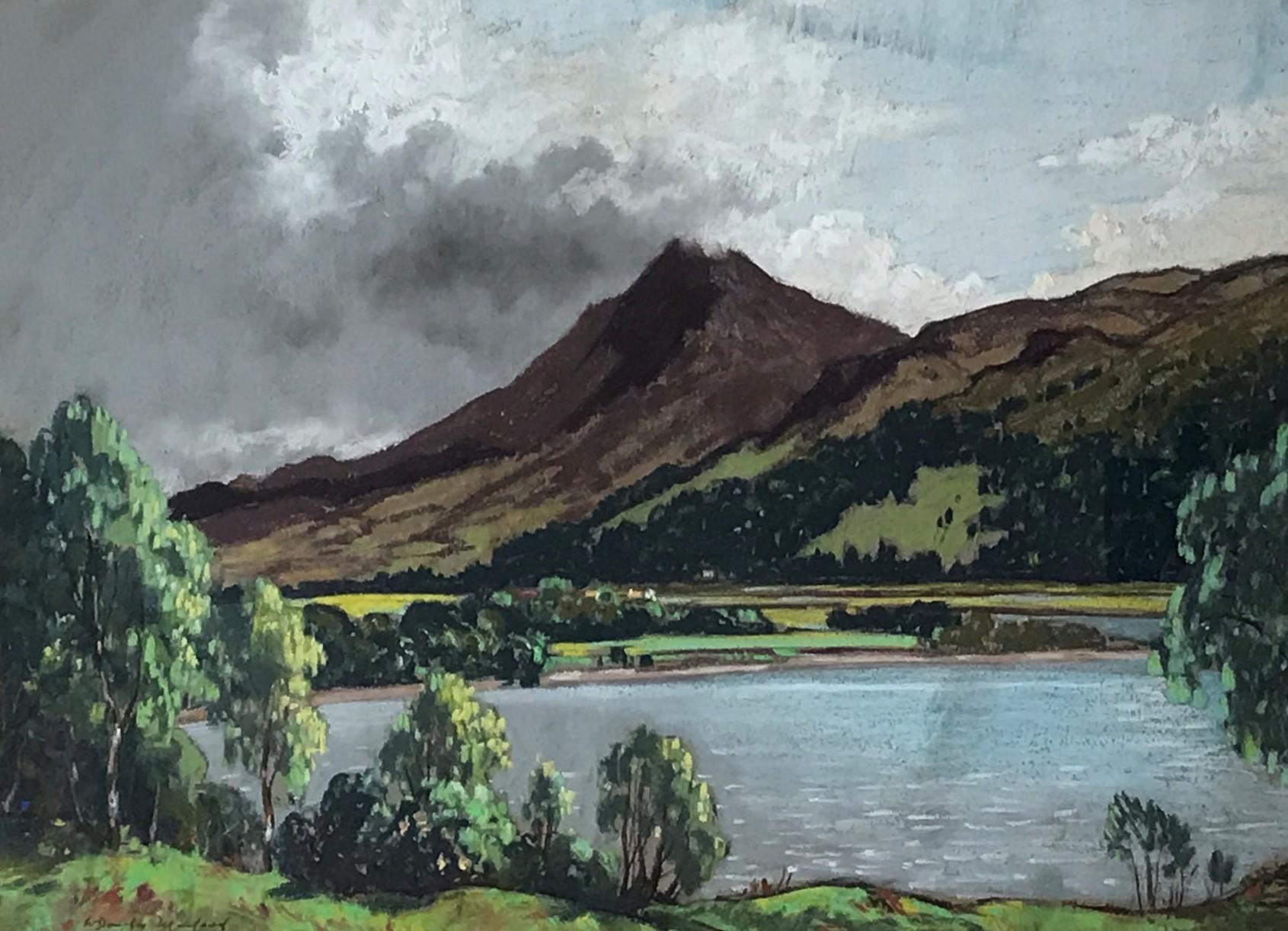 W .D Macleod