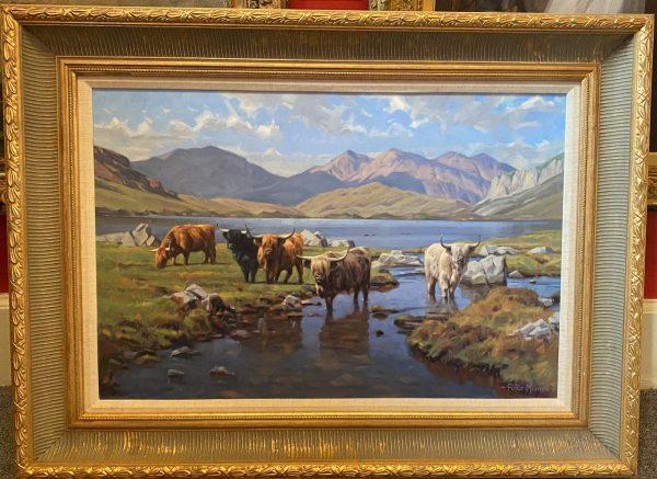 peter munro Highland Cattle (2)