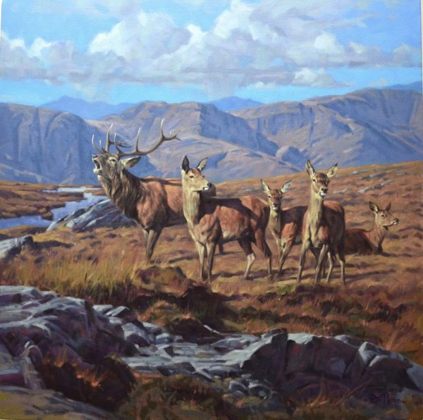 Stag & Hinds peter munro